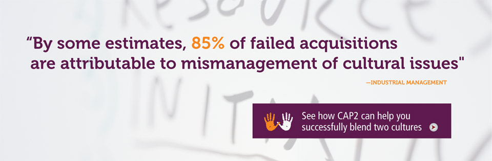 By some estimates, 85% of failed acquisitions are attributable to mismanagement of cultural issues.